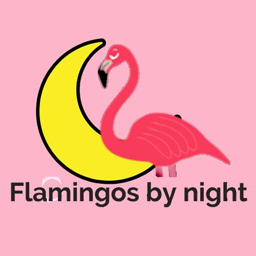 Flamingos by night logo