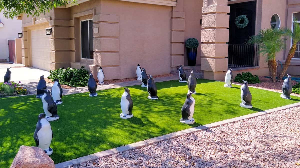 penguins on artificial turf in front yard for a formal birthday event